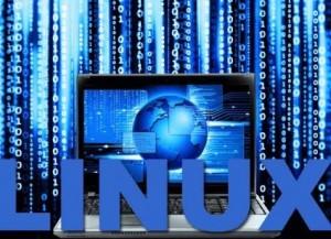buy-linux-vpn-300x217